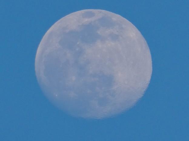 建設中のマンションのクレーンと上ったばかりの白い満月 - 5