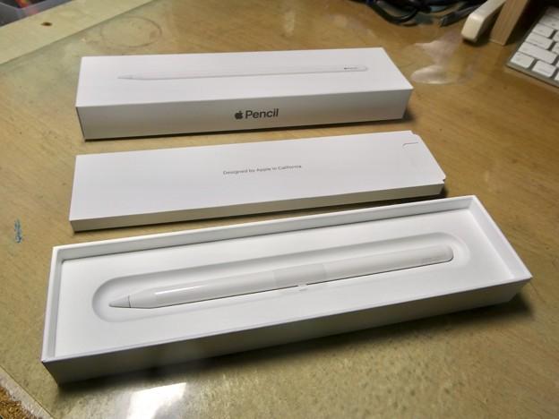 Apple Pencil(第2世代) - 3:箱を開けたところ