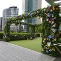 セントラルタワーズ:Flower Gate - 1