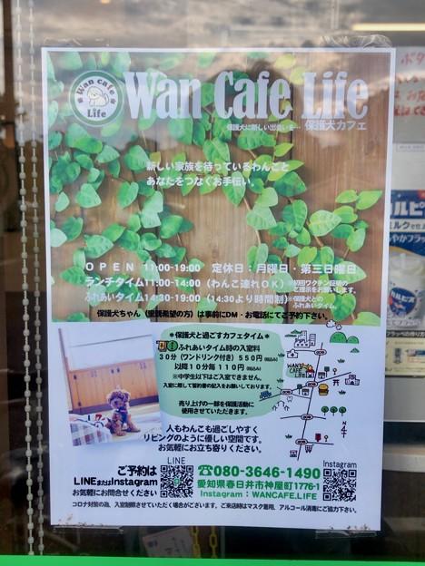 コンビニに貼られてた保護犬カフェのポスター