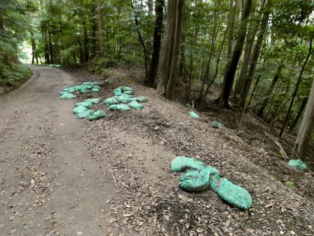 雨が理由か土嚢が崩れてた弥勒山の登山道(2021年7月12日) - 2