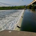 吉根橋近くの堰を流れる水 - 2