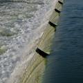 吉根橋近くの堰を流れる水 - 3