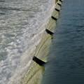 吉根橋近くの堰を流れる水 - 4