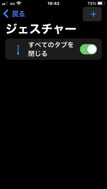 iOS15のSafariでジェスチャー操作できるようにする拡張機能「Svadilfari」 - 10