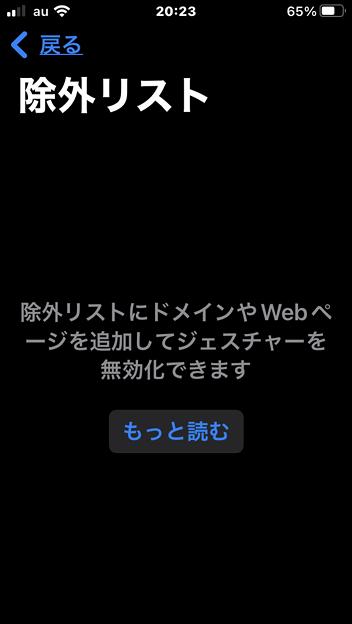 iOS15のSafariでジェスチャー操作できるようにする拡張機能「Svadilfari」 - 16