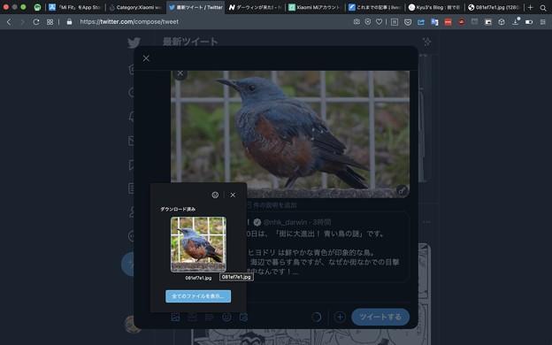 Opera 79:ダウンロードした画像を素早く投稿可能 - 1