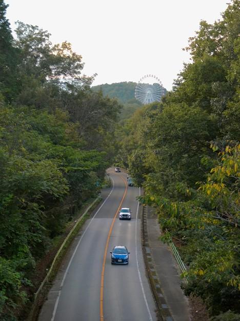 陸橋から見た尾張パークウェイ(愛知県道461号犬山自然公園線) - 3:モンキーパークの観覧車