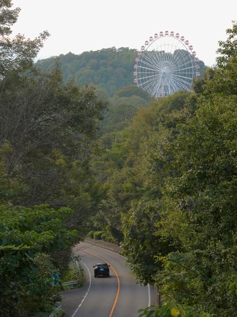 陸橋から見た尾張パークウェイ(愛知県道461号犬山自然公園線) - 5:モンキーパークの観覧車