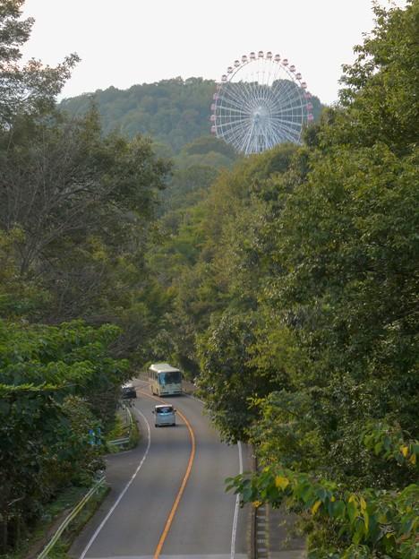 陸橋から見た尾張パークウェイ(愛知県道461号犬山自然公園線) - 7:モンキーパークの観覧車