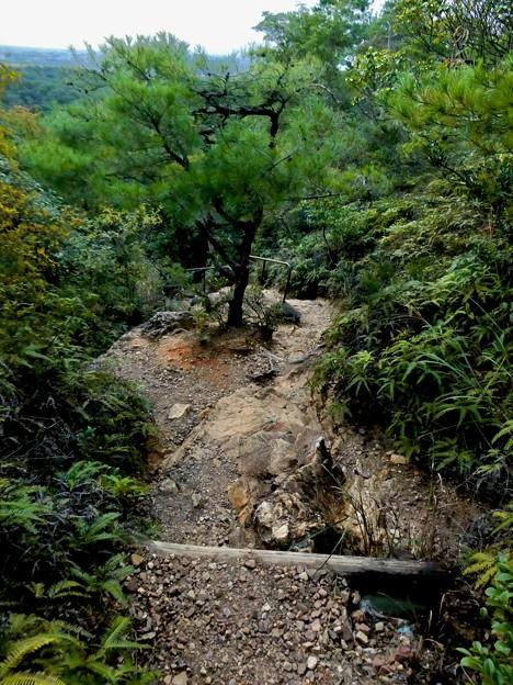 継鹿尾山頂上から寂光院への道 - 26