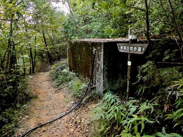 継鹿尾山頂上から寂光院への道 - 31