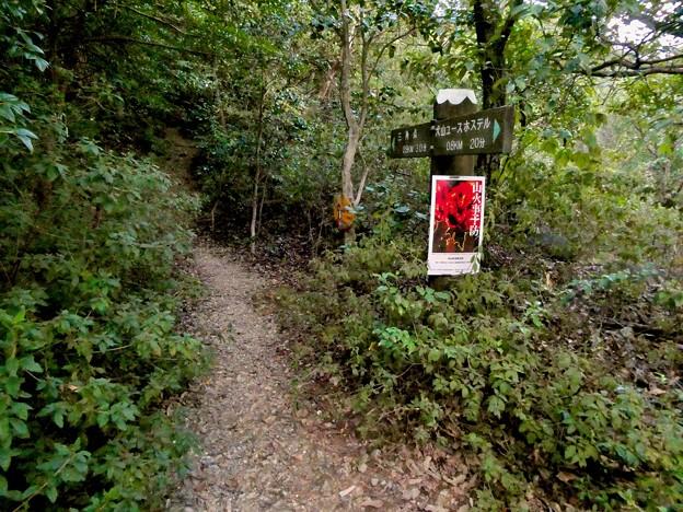 継鹿尾山頂上から寂光院への道 - 32:寂光院側の登山道入り口