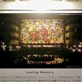 イーアス春日井のステンドグラスの説明パネル - 2:私の写真が使用されました!