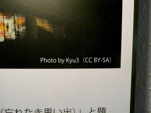 イーアス春日井のステンドグラスの説明パネル - 3:私の写真が使用されました!