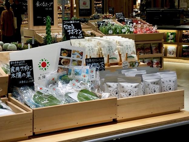 イーアス春日井の無印良品に食べるサボテン!? - 7:サボテン配合飴とサボテン風味のお茶
