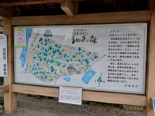 日本ラインうぬまの森:案内図
