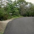 日本ラインうぬまの森:ふるさと眺望の丘へと通じる「萩の道」 - 1