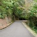 日本ラインうぬまの森:ふるさと眺望の丘へと通じる「萩の道」 - 2