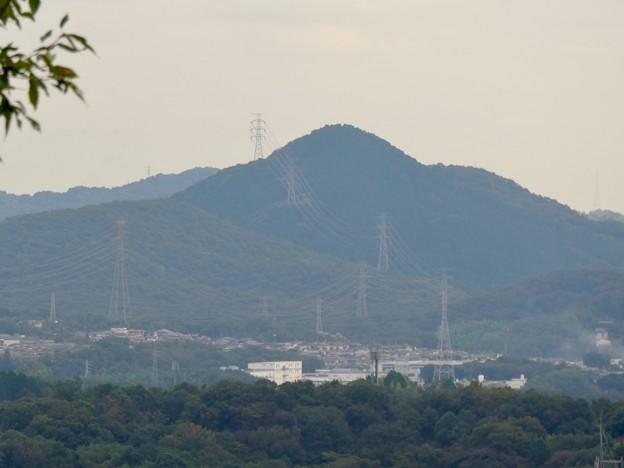 日本ラインうぬまの森:眺望の丘から見た景色 - 19(尾張富士)