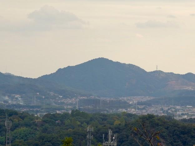 日本ラインうぬまの森:眺望の丘から見た景色 - 20(本宮山)
