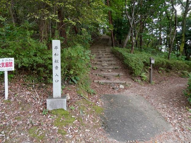 日本ラインうぬまの森:平和観音へと続く道 - 1(入り口)
