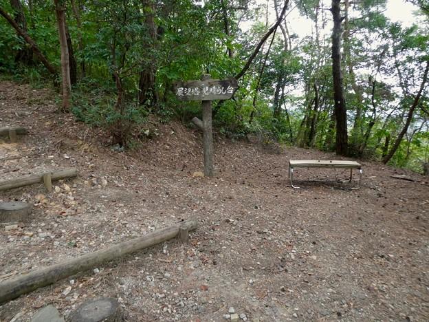 日本ラインうぬまの森:平和観音へと続く道 - 2(道沿いのベンチ)