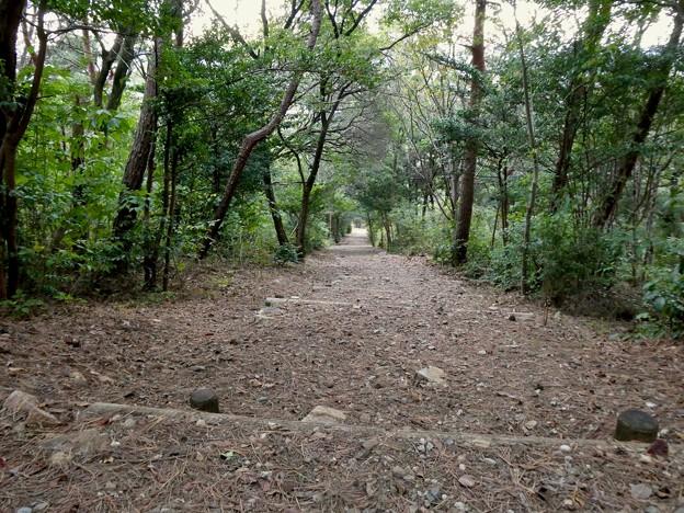 日本ラインうぬまの森:心臓破りの道?