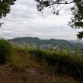 日本ラインうぬまの森:展望台手前から見た大平山と継鹿尾山 - 1