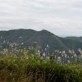 日本ラインうぬまの森:展望台手前から見た大平山と継鹿尾山 - 2