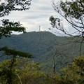 日本ラインうぬまの森:陰平山山頂付近から見た明王山展望台 - 1