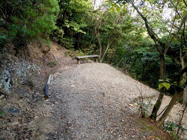 日本ラインうぬまの森:眺望の道 - 10