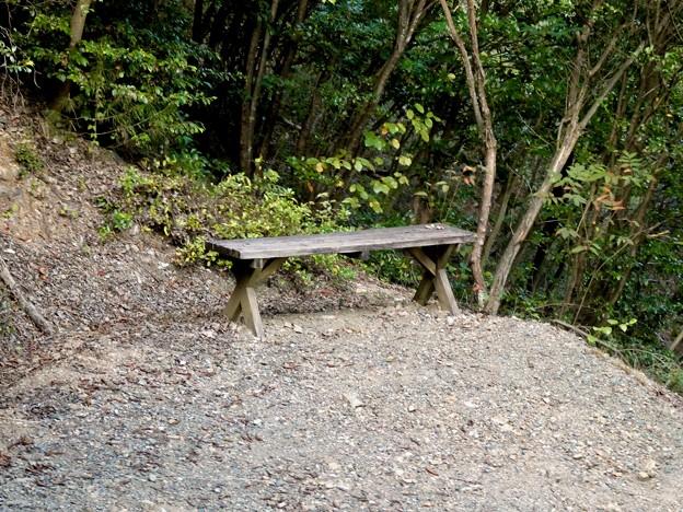 日本ラインうぬまの森:眺望の道 - 11