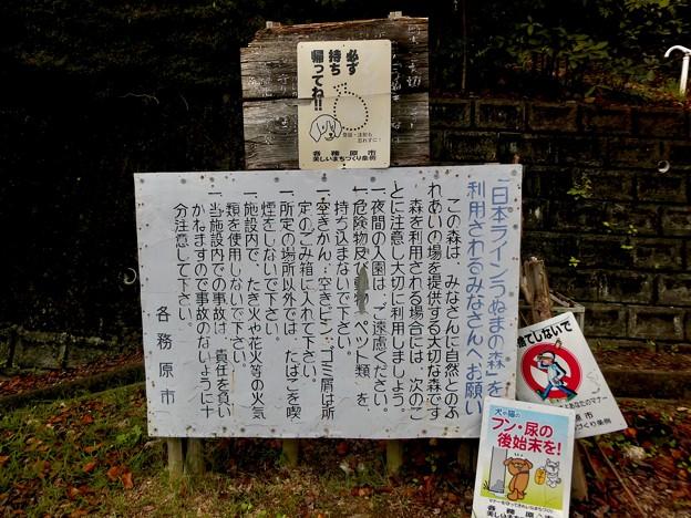 日本ラインうぬまの森:新鵜沼台側の登山道入り口 - 2