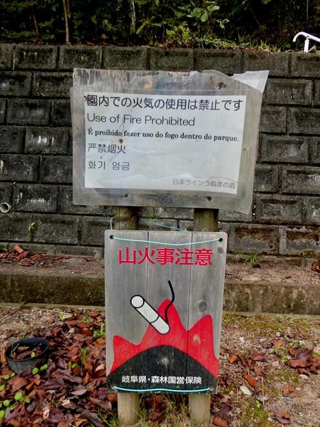 日本ラインうぬまの森:新鵜沼台側の登山道入り口 - 3