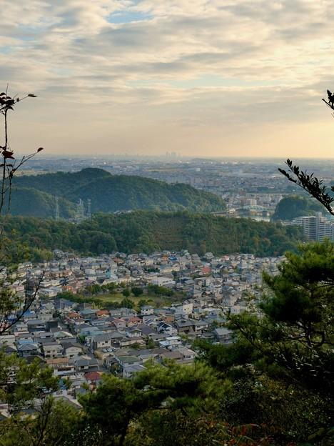 日本ラインうぬまの森:眺望の道から見た景色 - 7