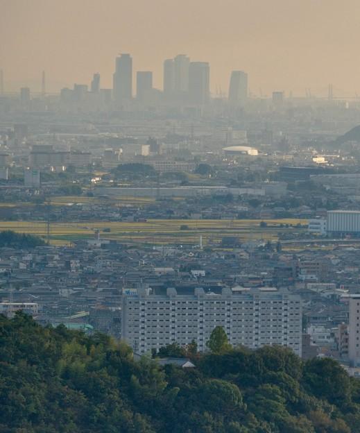 日本ラインうぬまの森:眺望の道から見た景色 - 10(名駅ビル群)