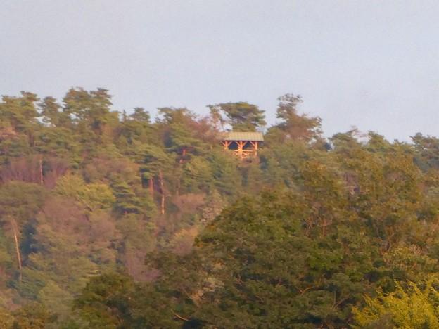 犬山橋から見た景色 - 7:継鹿尾山の展望台