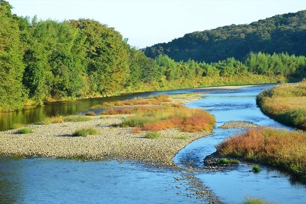 色鮮やかな河原