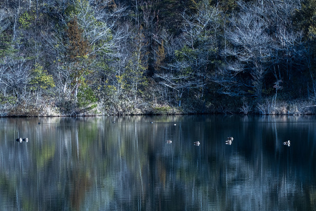 Photos: 湖