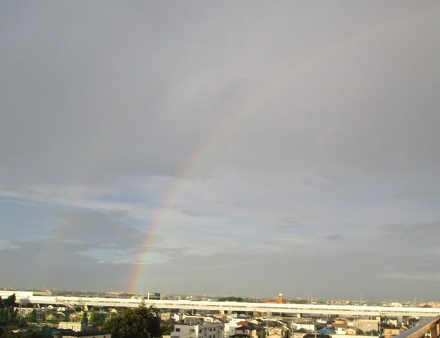 早朝の虹は西に見えた2