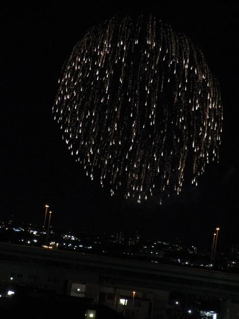 さいたま市サプライズ花火 (19)
