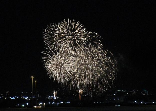 さいたま市サプライズ花火 (11)