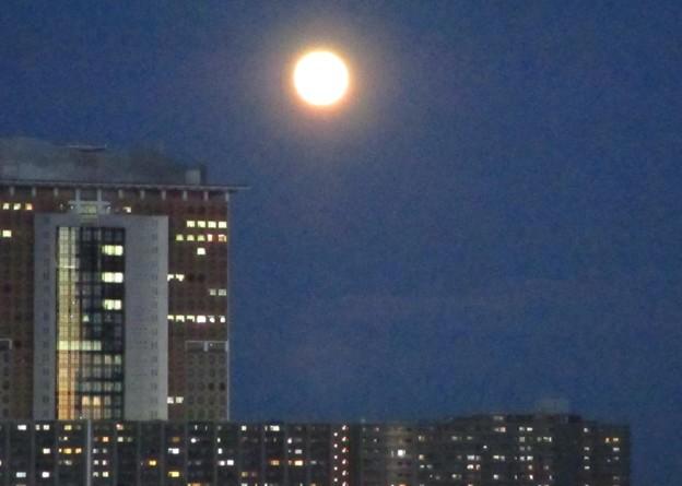 月の出 4