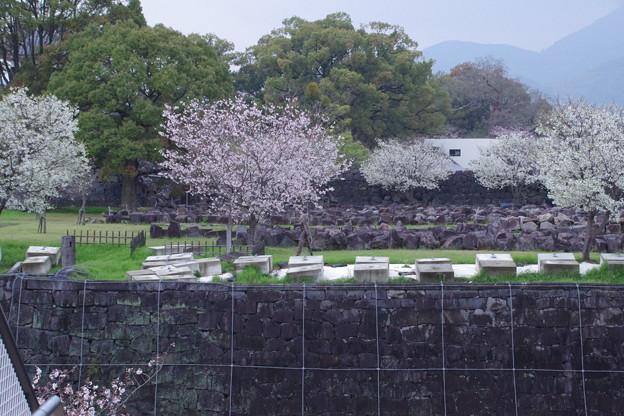 並べられた 石垣