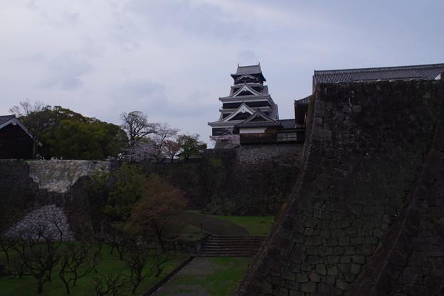 熊本城と言えば 武者返し