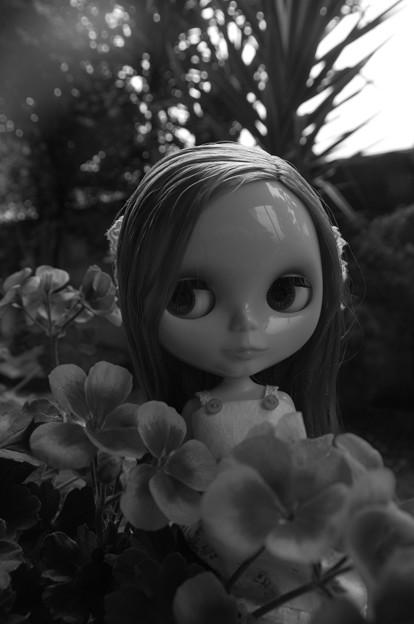 モノクロの美少女
