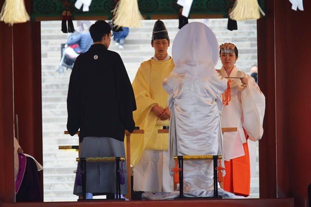 鶴岡八幡宮の新郎新婦 #鎌倉 #湘南 #kamakura #神社 #shrine #花 #flower