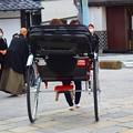 鎌倉市内を走る人力車 #鎌倉 #湘南 #kamakura #神社 #shrine #花 #flower