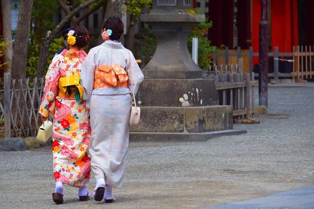 たくさんの人がいた鶴岡八幡宮 #湘南 #鎌倉 #kamakura #shrine #flower #花 #桜 #cherryblossom